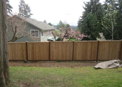 Cedar Full Panel Fence